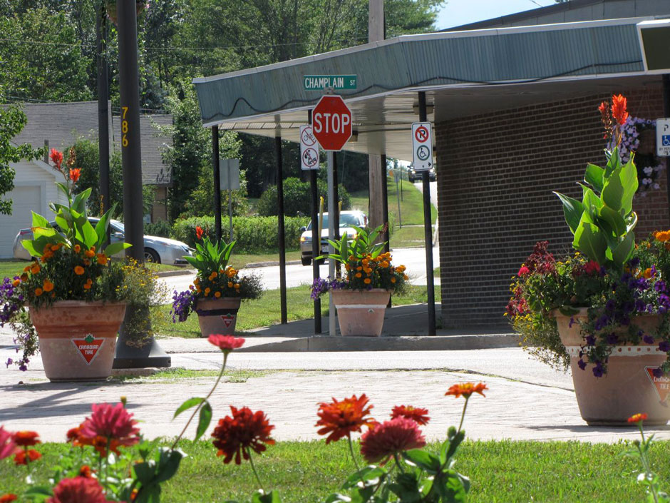 Hanging Flower Baskets Canadian Tire : Activities deep river and area horticultural society